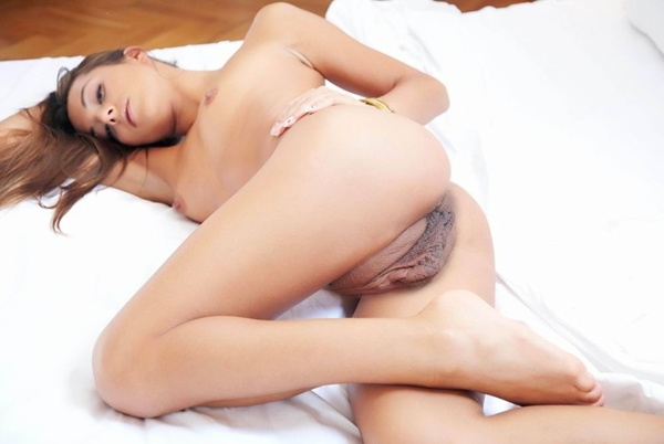 Pussy pics & movies - Gallery #134534 574265; Pussy
